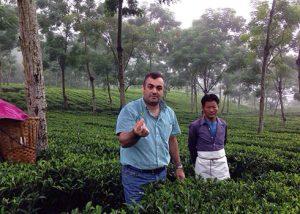 چای کلکته هندوستان