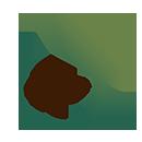 مرجع خرید و فروش انواع چای | چای