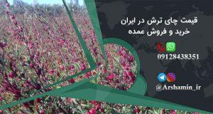 قیمت چای ترش در ایران