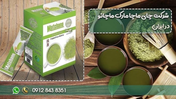 شرکت چای ماچا