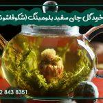 خرید گل چای سفید